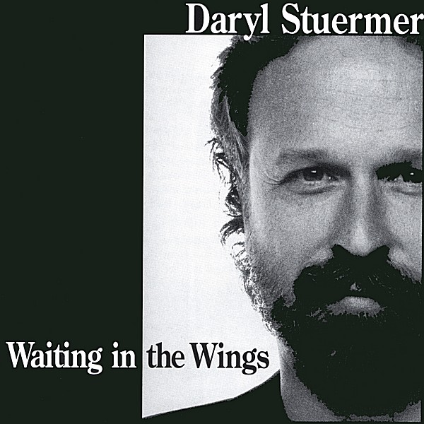 Daryl Stuermer — Waiting in the Wings