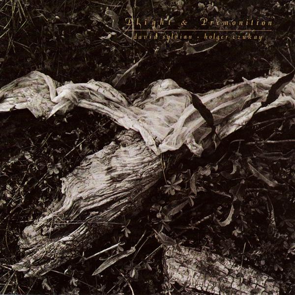 David Sylvian / Holger Czukay — Plight and Promonition
