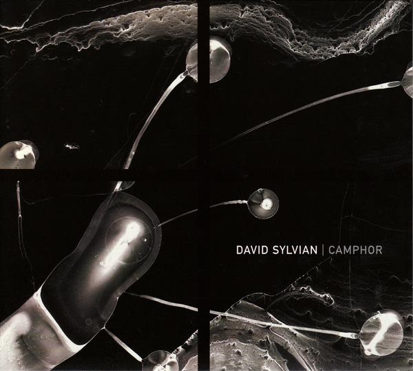 David Sylvian — Camphor