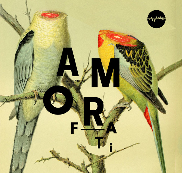 Amor Fati Cover art
