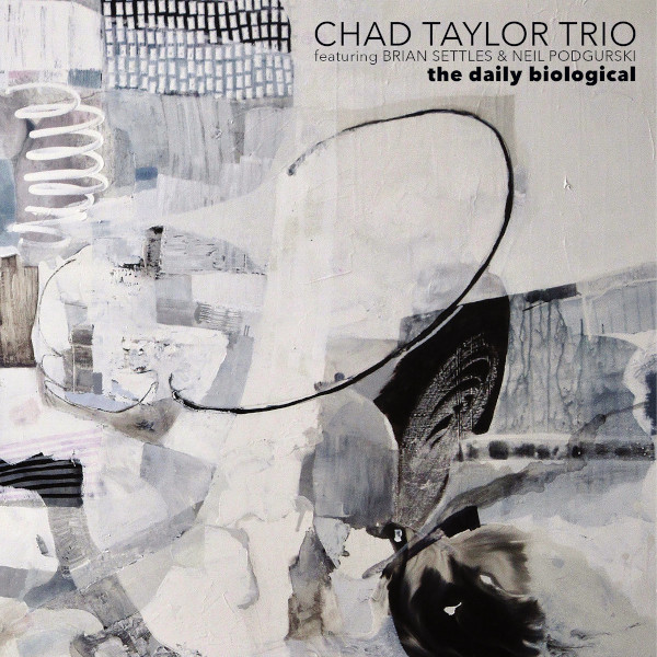 Chad Taylor Trio — The Daily Biological