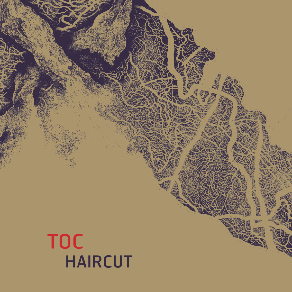 Haircut Cover art
