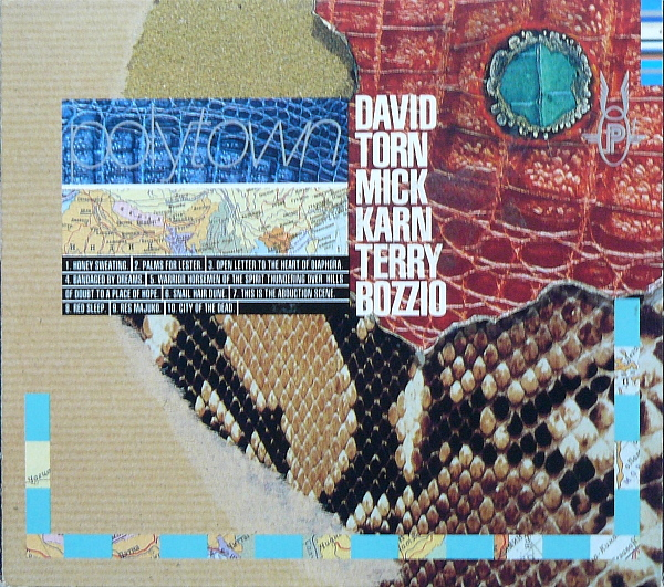 David Torn / Mick Karn / Terry Bozzio — Polytown