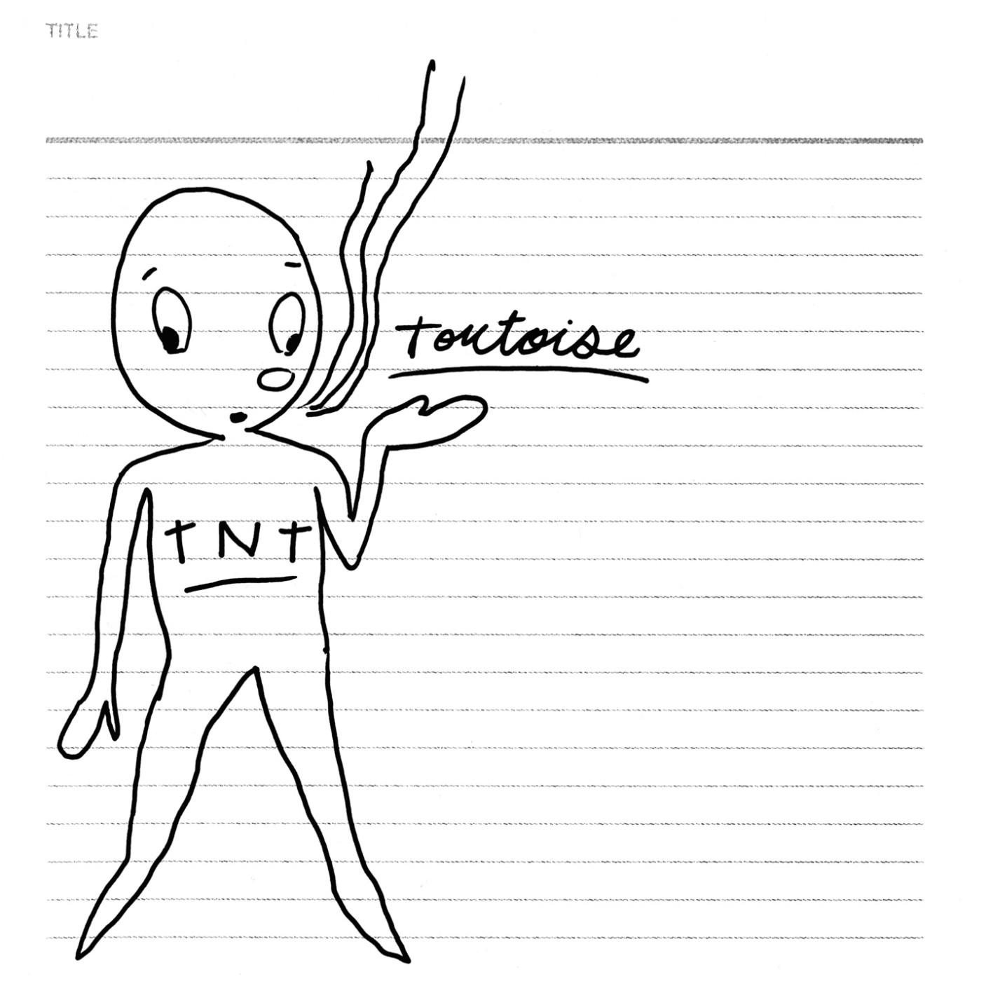 Tortoise — TNT