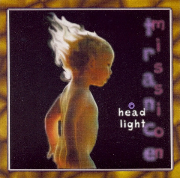 Head Light Cover art