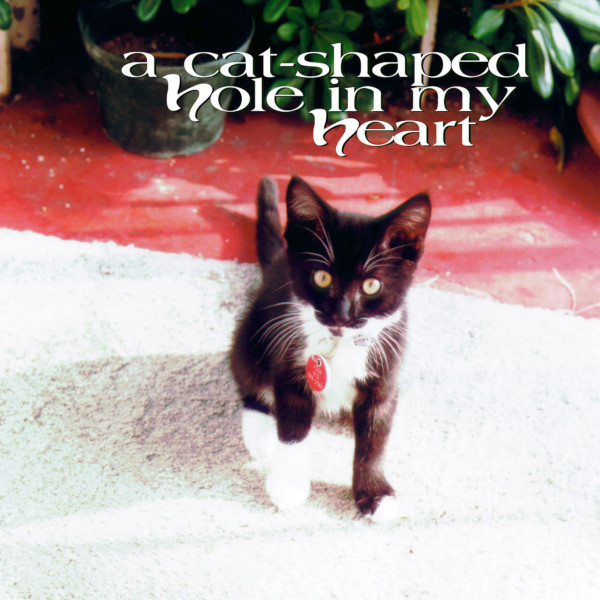 Various Artists — A Cat-Shaped Hole in My Heart