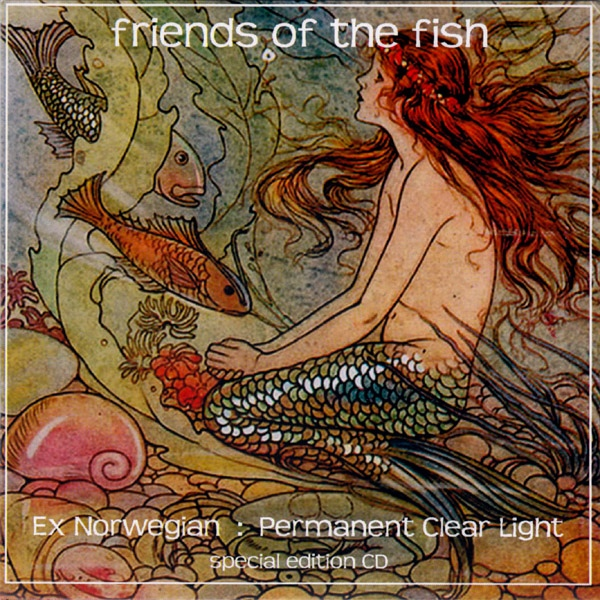 Friends of the Fish (America Meets Finland) Cover art