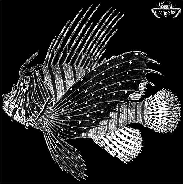 Various Artists — Strange Fish Two