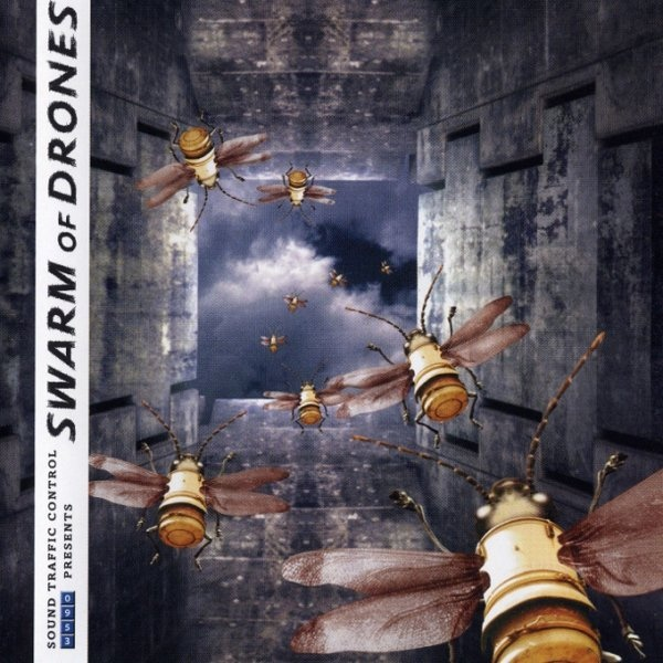 A Sombient Continuum: A Swarm of Drones Cover art