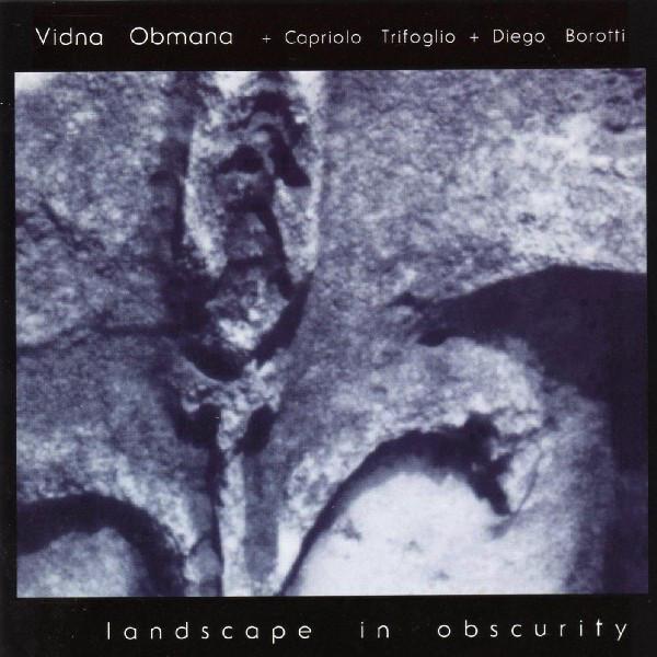 Vidna Obmana + Capriolo Trifoglio + Diego Borotti — Landscape in Obscurity