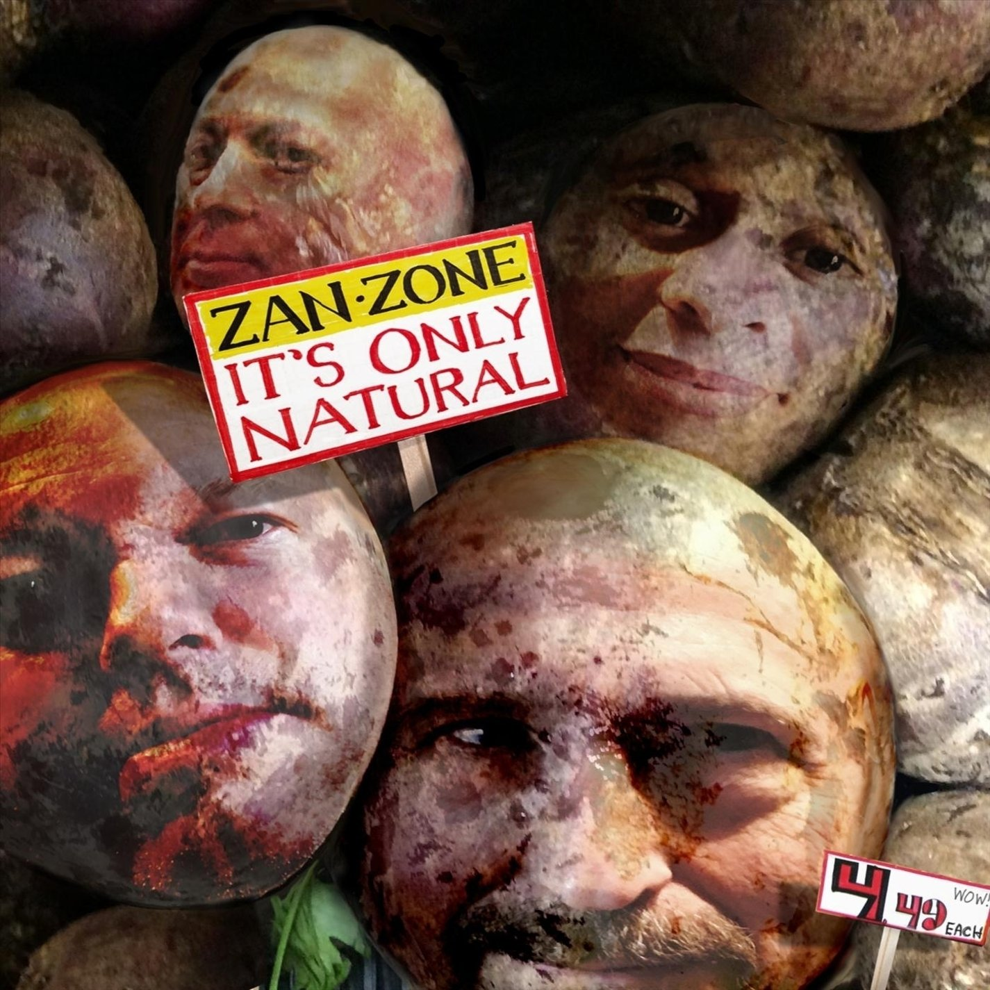 Zan Zone — It's Only Natural